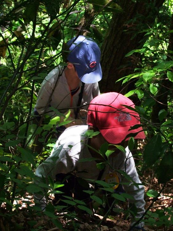 ふくい森の子自然学校