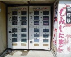 卵の児童販売機
